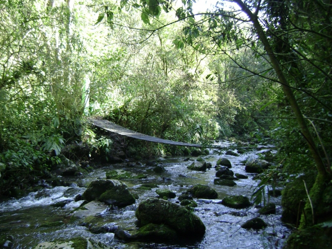 Parque das 8 Cachoeiras/Reprodução